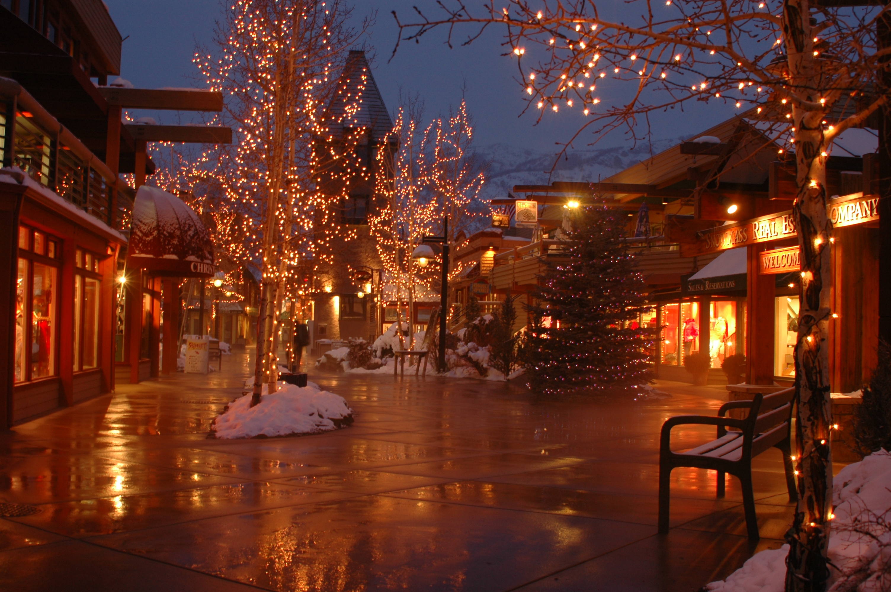 View All Snowmass Activities